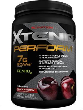 Scivation Xtend Perform 44 serv-big